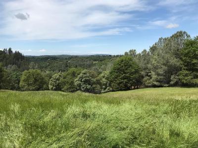 Auburn Residential Lots & Land For Sale: 23020 Oak Mountain Court