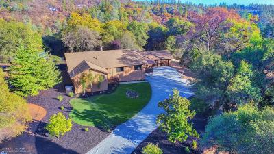 Grass Valley Single Family Home For Sale: 17495 N Cherry Creek Road