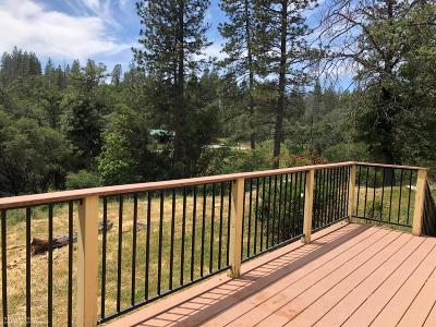 Nevada City Single Family Home For Sale: 12876 Jones Bar Road