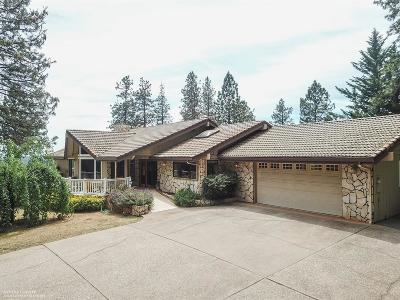 Grass Valley Single Family Home For Sale: 15385 Carrie Drive
