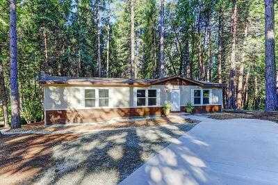 Nevada City Single Family Home For Sale: 12834 Spanish Lane