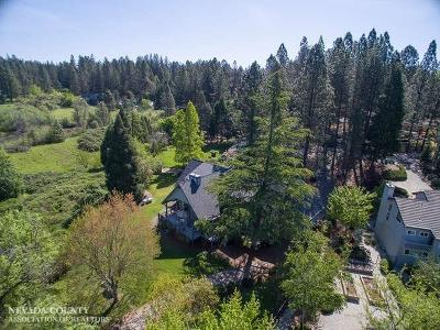 Grass Valley Single Family Home For Sale: 11320 Michael Way