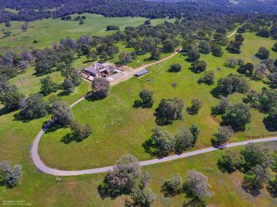 Butte County, Nevada County, Placer County, Sacramento County, Sierra County, Sutter County, Yuba County Single Family Home For Sale: 503 Los Verjeles Road