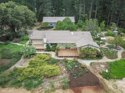 Nevada City Single Family Home For Sale: 17174 Rock Creek Road