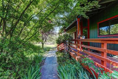 North San Juan Single Family Home For Sale: 26156 Sweetland Road
