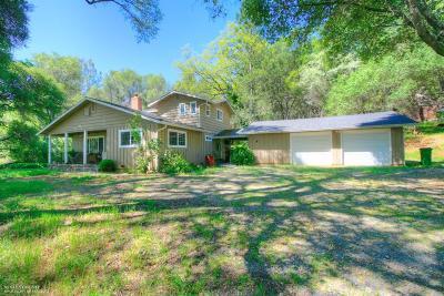 Penn Valley Single Family Home For Sale: 18580 Osceola Lane