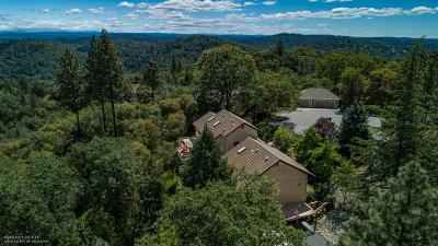 Grass Valley Single Family Home For Sale: 17444 Troy Court