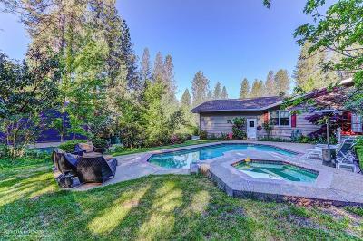 Grass Valley Single Family Home For Sale: 12040 E Bennett Road
