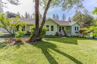 Grass Valley Single Family Home For Sale: 13101 Twin Star Lane