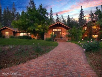 Grass Valley Single Family Home For Sale: 13655 Thoroughbred Loop Loop