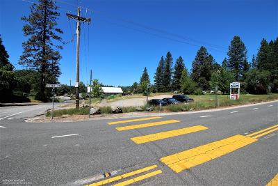 Residential Lots & Land Sold: 17778 Lower Colfax Road