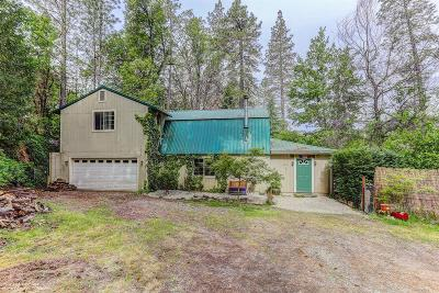 Nevada City Single Family Home For Sale: 12922 Shady Creek Drive
