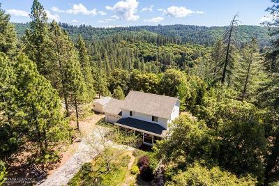 Grass Valley Single Family Home For Sale: 19430 Heather Dee Court