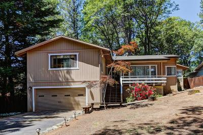 Grass Valley Single Family Home For Sale: 16774 Alioto Drive