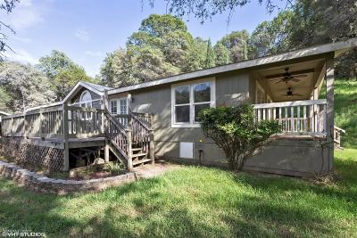 Grass Valley Single Family Home Active REO: 10667 Wolf Drive