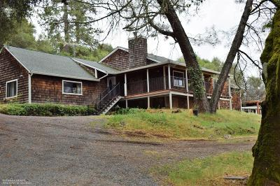 Grass Valley Single Family Home For Sale: 16883 Duggans Road