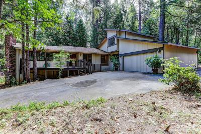 Nevada City Single Family Home For Sale: 11299 Murchie Mine Road
