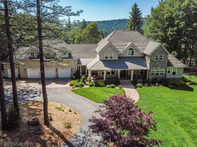 Nevada City Single Family Home For Sale: 10920 Mill Springs Drive