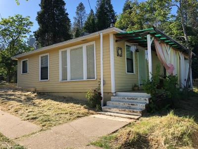 Grass Valley Single Family Home For Sale: 137 Harris Street