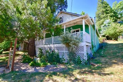 Grass Valley Single Family Home For Sale: 116 Wood Street