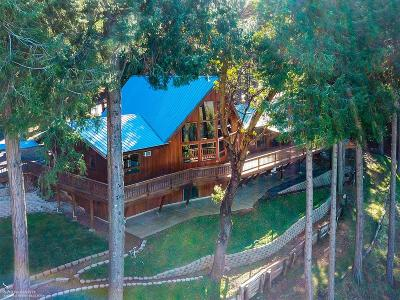 Nevada City CA Single Family Home For Sale: $695,000