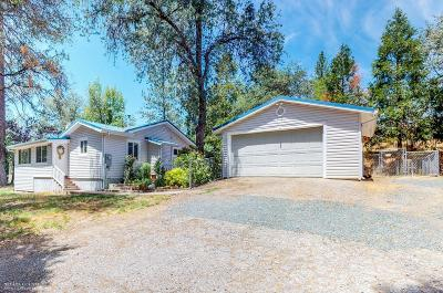 Nevada City Single Family Home For Sale: 10922 Newtown Road