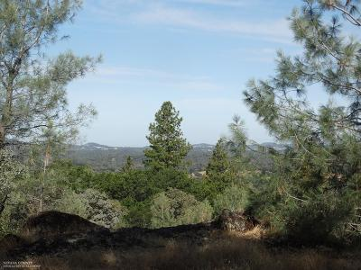 Auburn Residential Lots & Land For Sale: 24988 Rodeo Flat Road