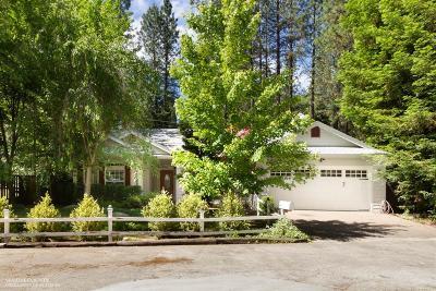 Nevada City Single Family Home For Sale: 697 Nivens Lane
