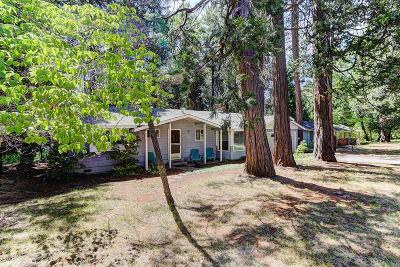 Nevada City Single Family Home For Sale: 13093 Mayflower Drive