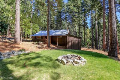 Nevada City Single Family Home For Sale: 23855 State Hwy 20