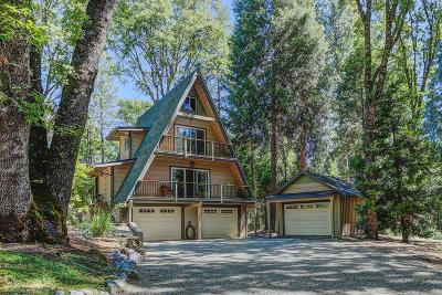 Nevada City Single Family Home For Sale: 11368 Silver Willow Lane