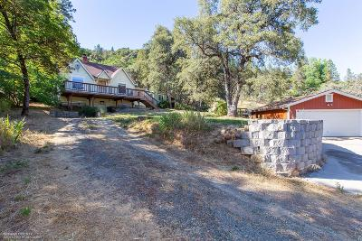 Nevada City Single Family Home For Sale: 15422 State Highway 20