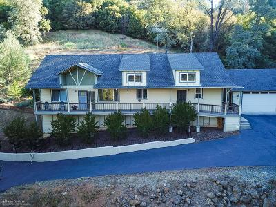 Grass Valley Single Family Home For Sale: 16345 Dog Bar Road