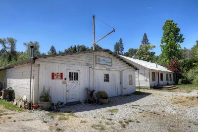 Nevada City Single Family Home For Sale: 29085 Highway 49