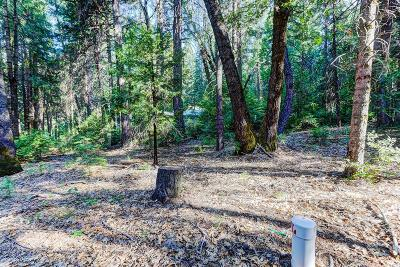Residential Lots & Land For Sale: 13642 Red Dog Road