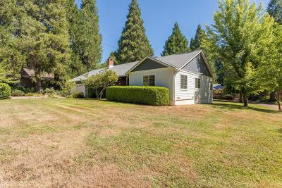 Grass Valley Single Family Home For Sale: 687 Brighton Street