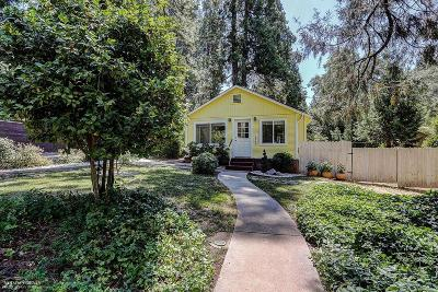 Grass Valley Single Family Home For Sale: 10763 Pine Hill Drive
