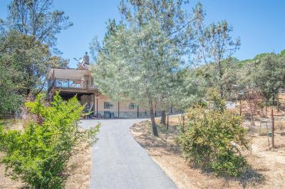 Grass Valley Single Family Home For Sale: 15552 Wolf Mountain Road