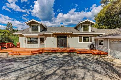 Nevada County Single Family Home For Sale: 16029 Annie Drive