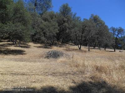 Residential Lots & Land For Sale: 15949 Brewer Road