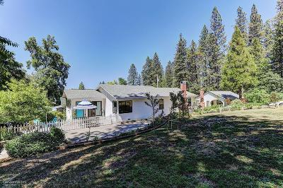 Grass Valley Single Family Home For Sale: 181 Lucas Lane