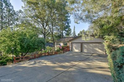 Nevada County Single Family Home For Sale: 11185 Bobolink Way