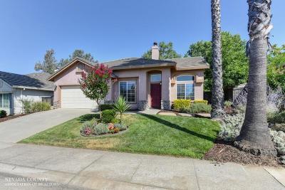 Folsom Single Family Home For Sale: 133 Lembi Drive