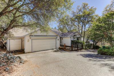 Penn Valley Single Family Home For Sale: 20583 Chaparral Circle