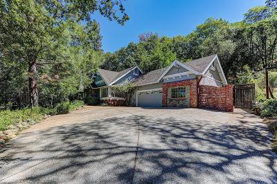 Grass Valley Single Family Home For Sale: 17045 Round Valley Circle