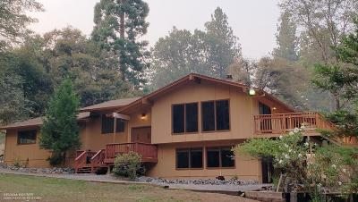 Grass Valley Single Family Home For Sale: 15248 Chattering Pines Road