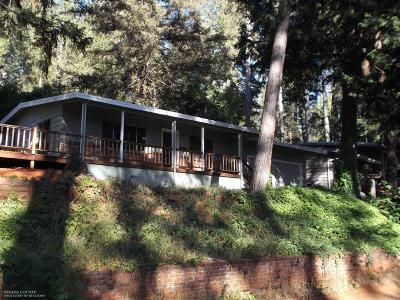 Grass Valley Single Family Home For Sale: 10567 Partridge Road