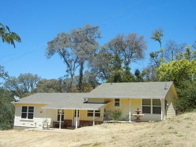 Auburn Single Family Home For Sale: 9840 Joeger Road