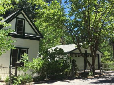 Nevada City Single Family Home For Sale: 411 Sacramento Street