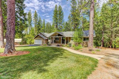 Nevada City Single Family Home For Sale: 12695 Pinewoods Road